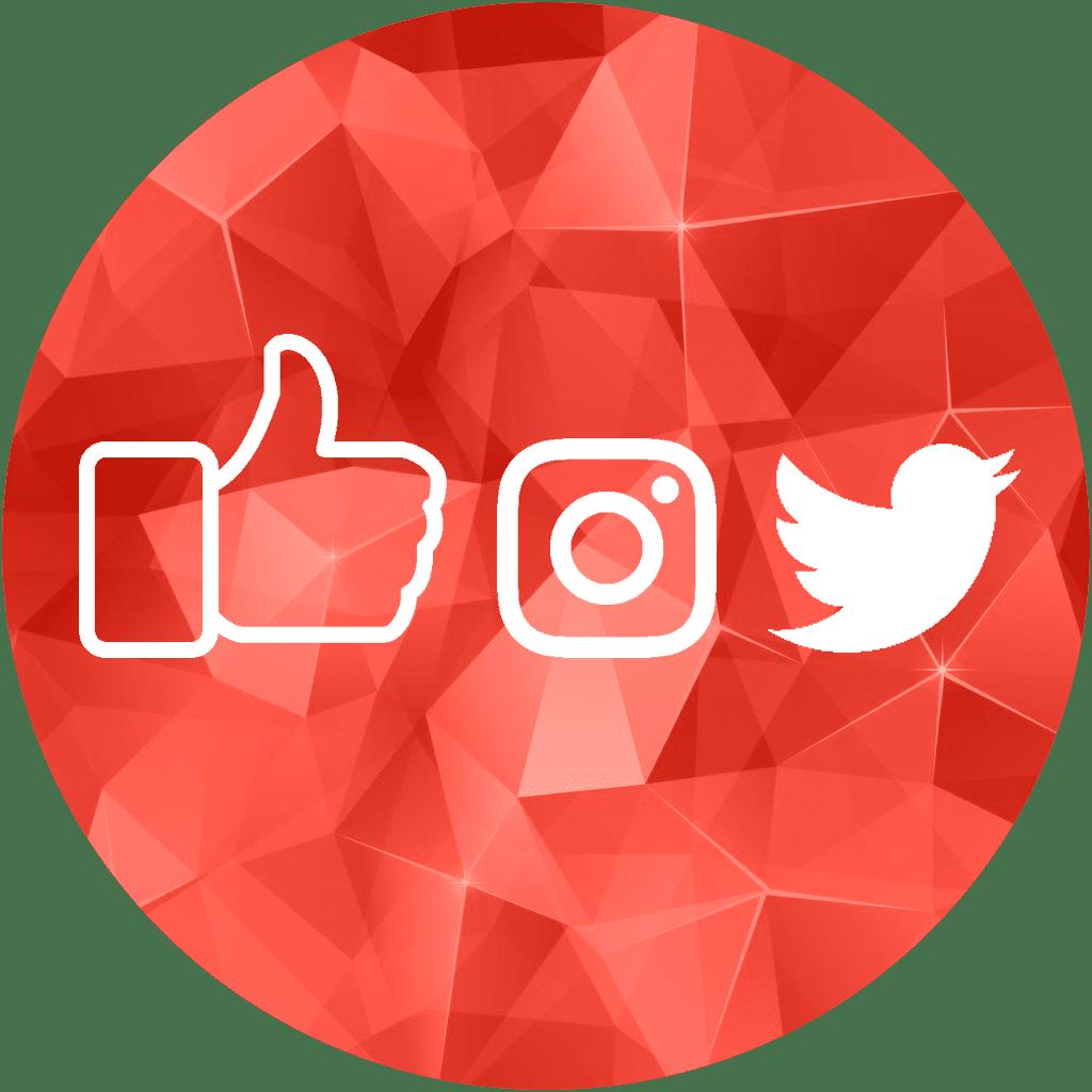 picto-reseaux-sociaux-digitalizme